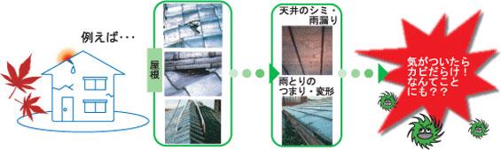 天井のシミ・雨漏り、雨といのつまり・変形